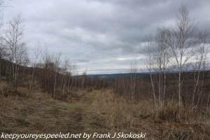 clouds and trees on Prairie Grass trail at Lehigh Gap
