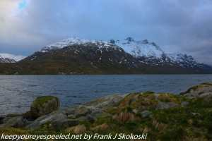 snow-capped mountians near fjord