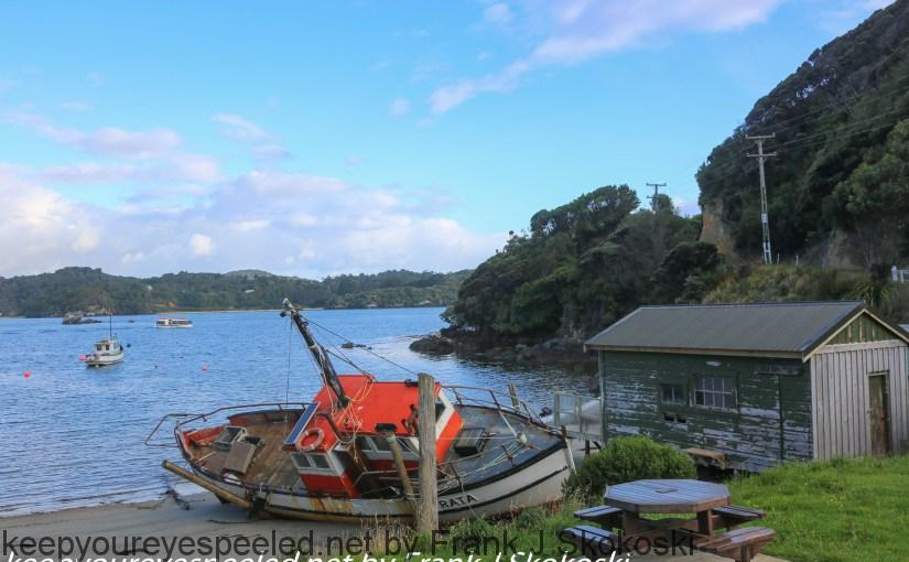 New-Zealand-Day-Eleven-Stewarts-Island-morning-walk-9-of-27