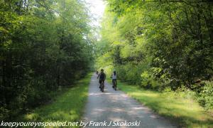 bikers on tree lined trail