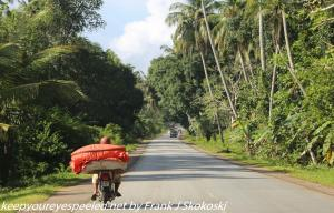 road to Stone Town