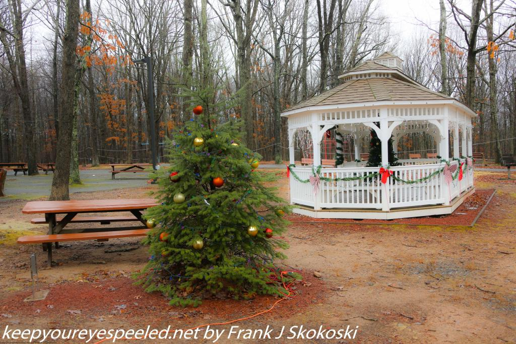 Community park (2 of 33)