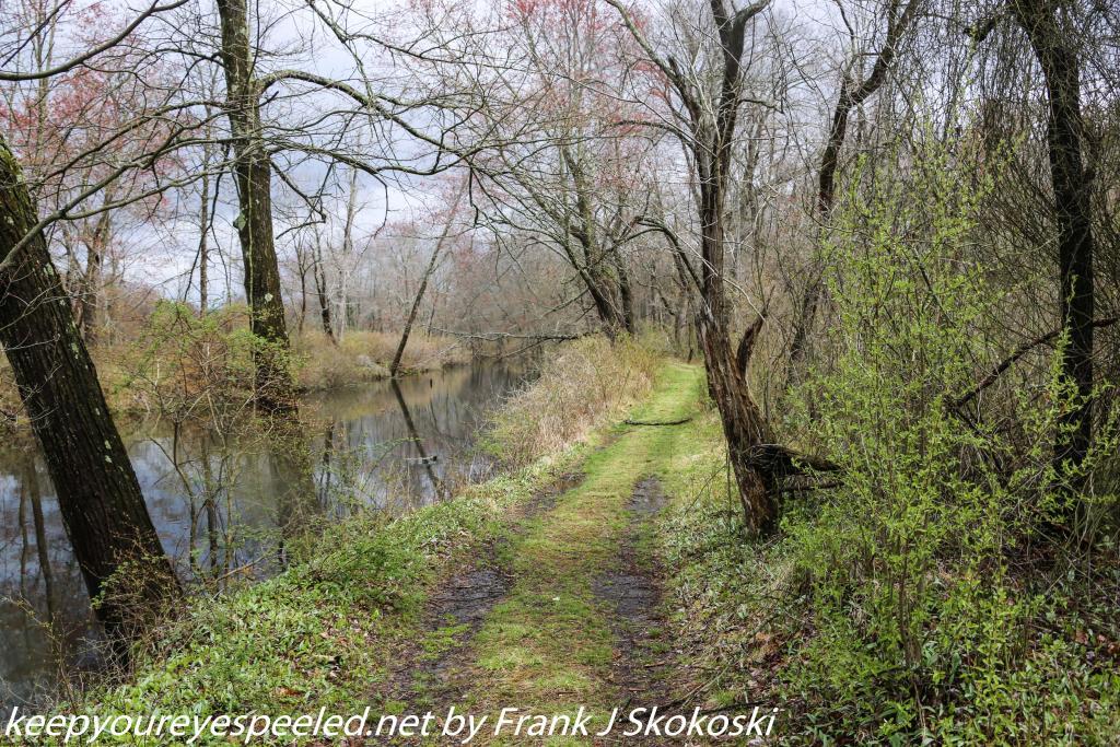 PPL Wetlands (16 of 50)
