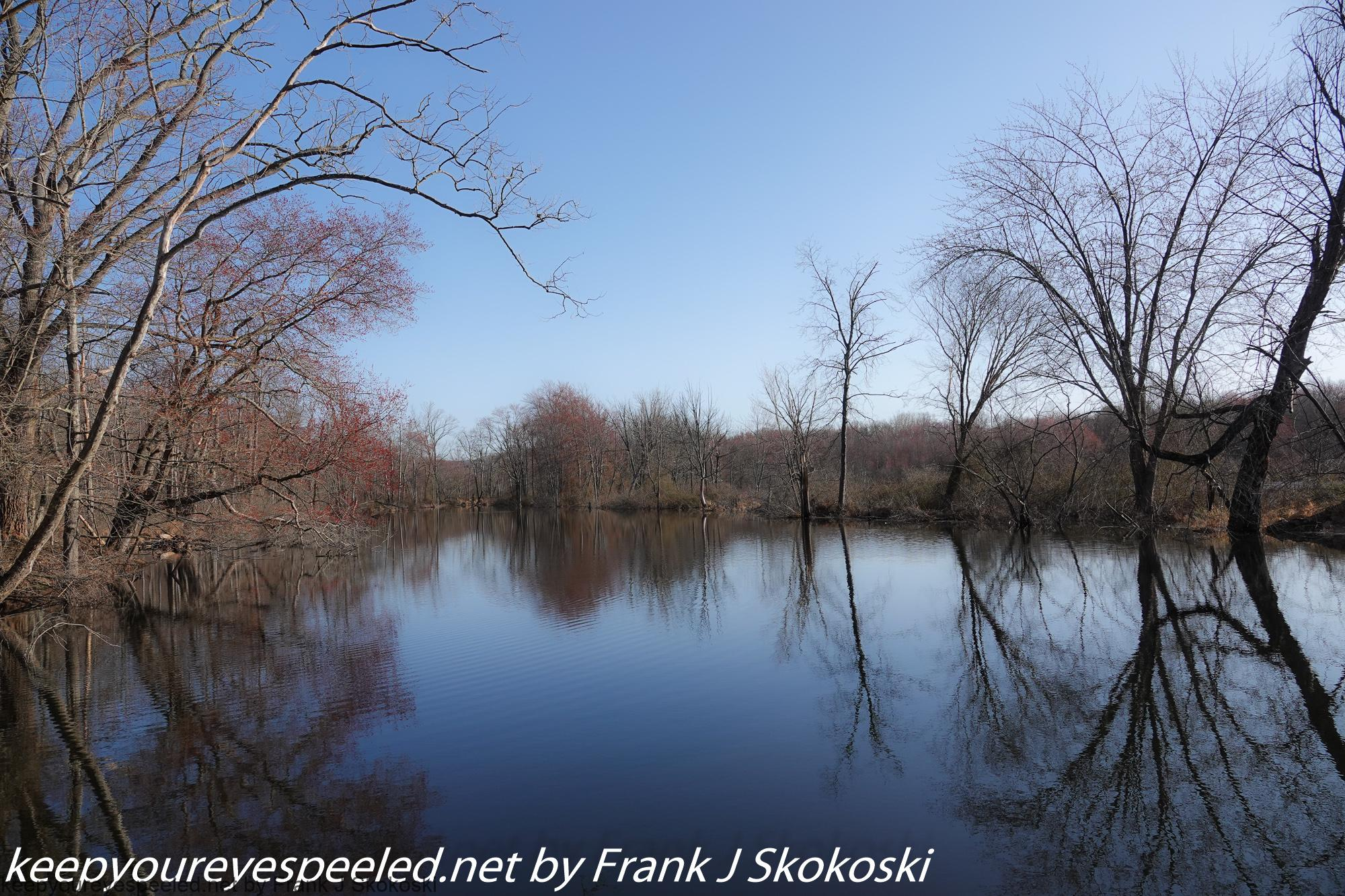 A Walk In The Susquehanna Wetlands: A Different Name But The Same Natural Beauty - Keep Your Eyes Peeled