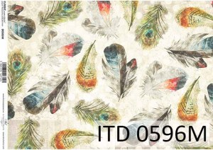 D0596M small N