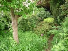 Side Garden, 2013