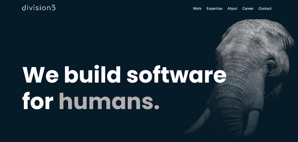 division5 - software development firm website design