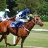 【府中牝馬S2015結果】11番人気のノボリディアーナが女王杯への切符を獲得