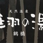 ロウリュウが一番熱いスーパー銭湯「延羽の湯鶴橋店」