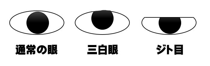 三白眼とジト目との違い