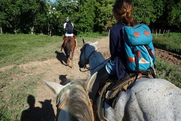 ビニャーレスで初めて馬に乗ったけど、、えーーと・・
