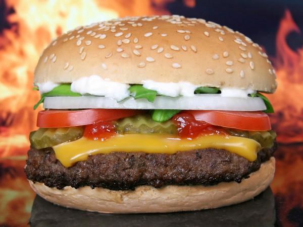僕の夢~僕はハンバーガーになりたかった~