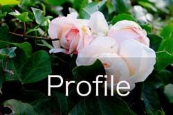 keiko saijo profile