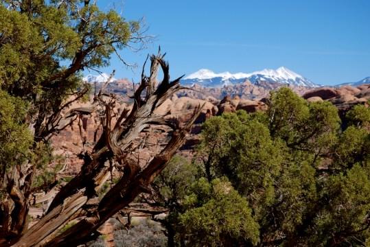 2012-C-Moab 2012 Cliffhanger - 18