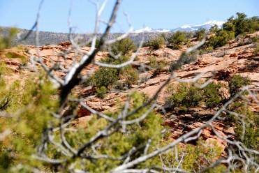 2014-FIM-Moab 2014 Flat Iron Mesa – 18