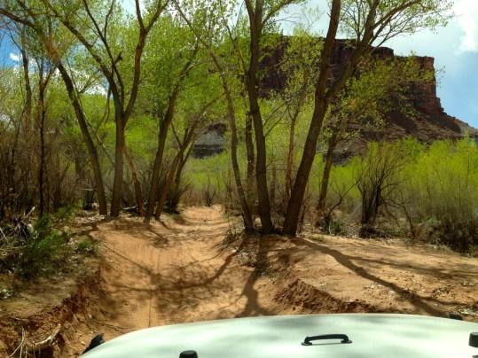 2014-KCC-Moab 2014 Kane Creek Canyon – 13