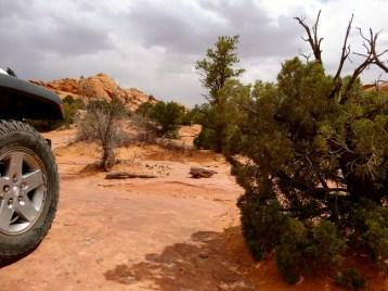 2014-PSM-Moab 2014 Poison Spider Mesa – 18