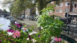 Bild: Steven Ohm, Amsterdam Heden en Verleden