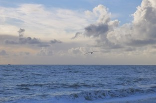 Love the seaside - even in Winter