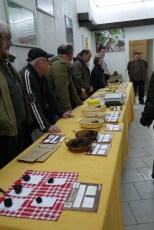 Inside the truffle market