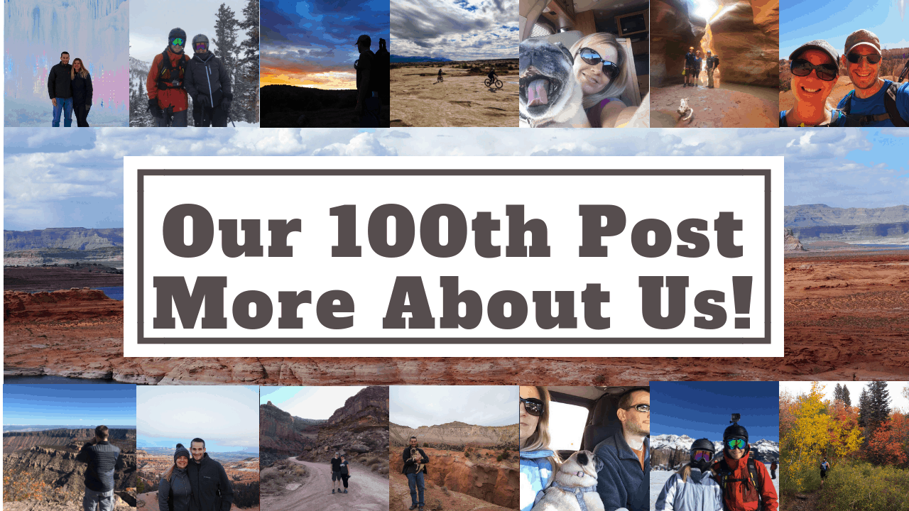 Our 100th Post More About Us