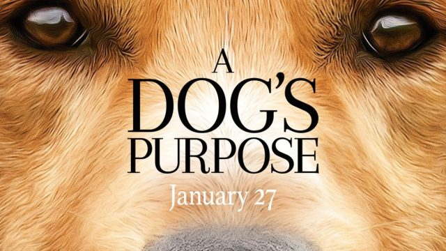 https://i1.wp.com/keithlovesmovies.com/wp-content/uploads/2017/01/a_dogs_purpose.jpg?resize=640%2C360&ssl=1
