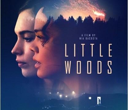 https://i1.wp.com/keithlovesmovies.com/wp-content/uploads/2019/04/littlewoods.jpg?resize=417%2C360&ssl=1