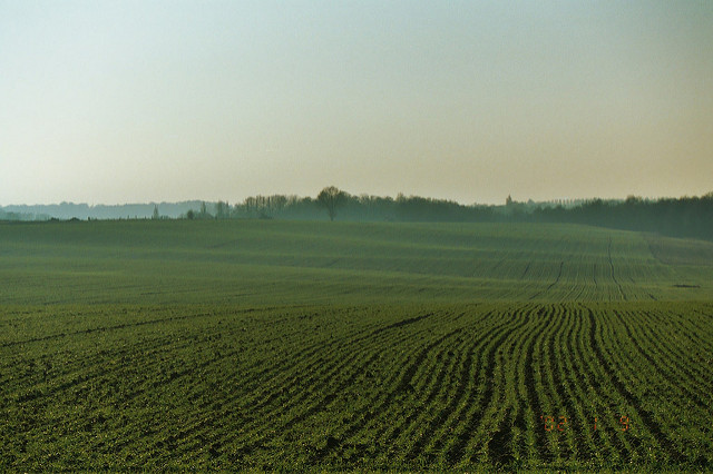 Farmland in Belgium that was the site of the Battle of Waterloo