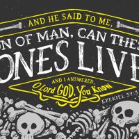The valley of dry bones (Ezekiel 37:11-14)