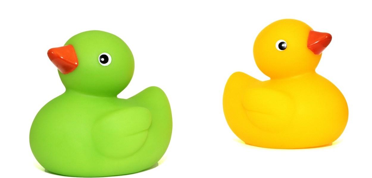 toy ducks