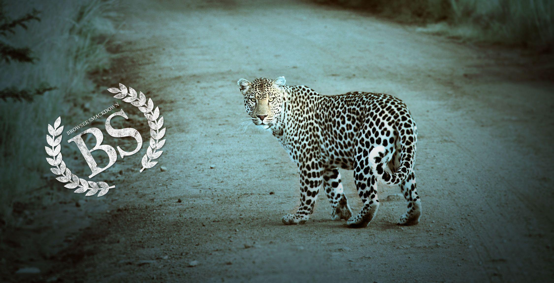 Browser Smackdown: Safari
