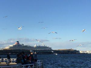 横浜港の飛鳥Ⅱ