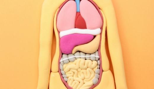 コードブルー1st 第8話解説|外傷性結腸損傷 腹膜炎とフリーエアーの意味