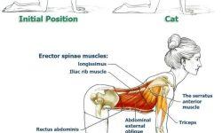 Yoga untuk sakit pinggang dan sakit punggung! 10 menit Sembuh