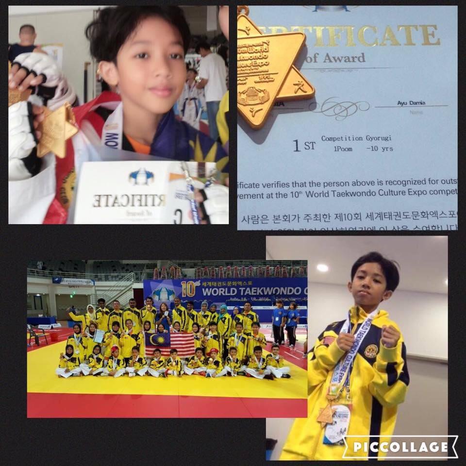 10th World Taekwondo Expo 2016-06