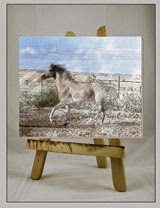 lukisan kuda 17