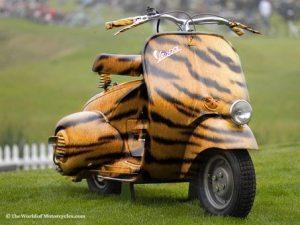 Vespa macan