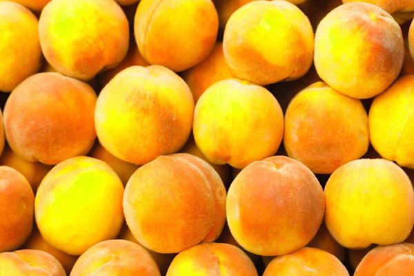 apricot_abricot_yellow_delivery_lebanon