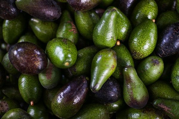 avocado_avocat_delivery_lebanon