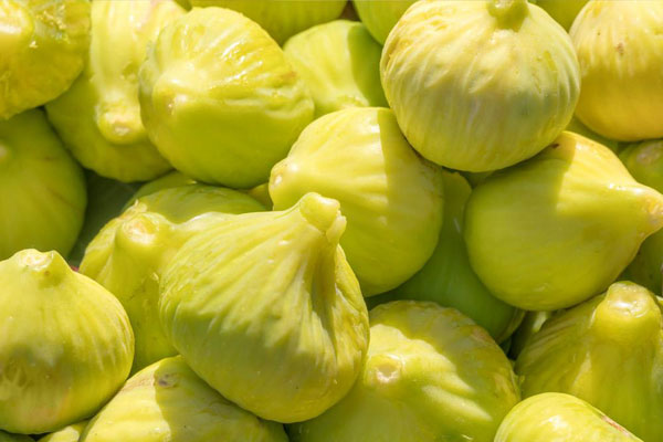 figs_figues_yellow_jaune_delivery_lebanon