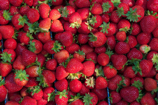 fraise_strawberry_delivery_lebanon