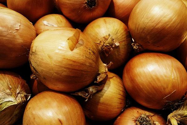 onion_delivery_lebanon