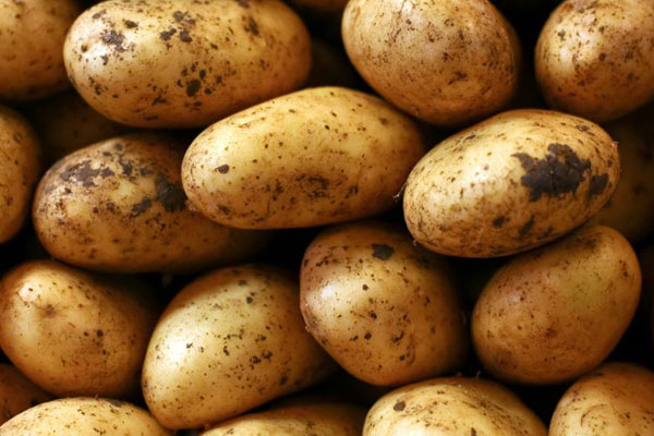 potatoe_pomme_de_terre_delivery_lebanon