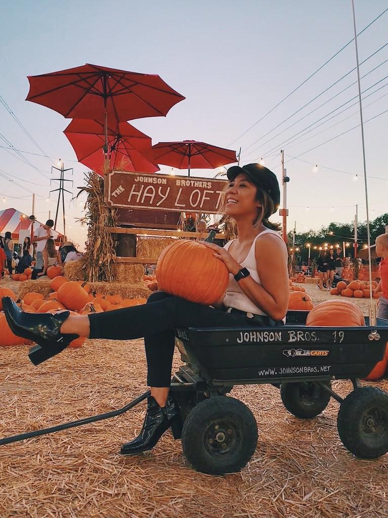 Pumpkin patch in Irvine, Orange County