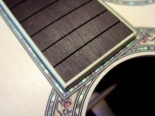 Rosette and Fingerboard