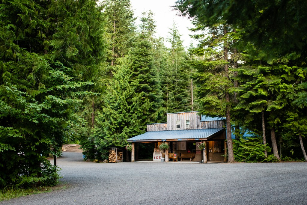 Photo of an old-fashioned store surrounded by tall evergreen trees