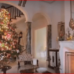 Susan Dyer's Christmas Trees