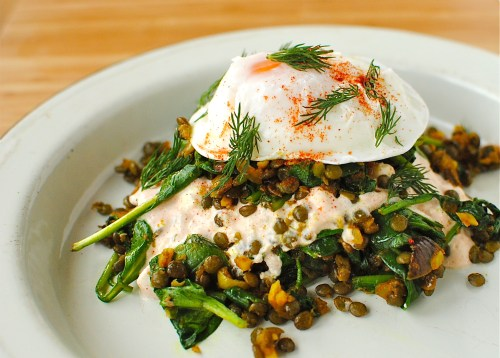 lentils, eggs, yogurt