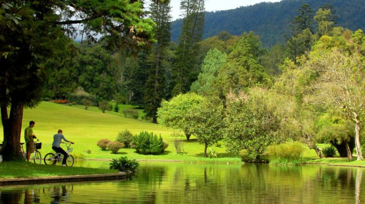Kebun Raya Cibodas Cianjur Jawa Barat
