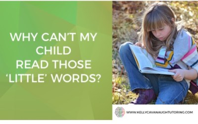 "Why Can't My Child Read Those ""Little"" Words?"